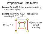 properties of tutte matrix17