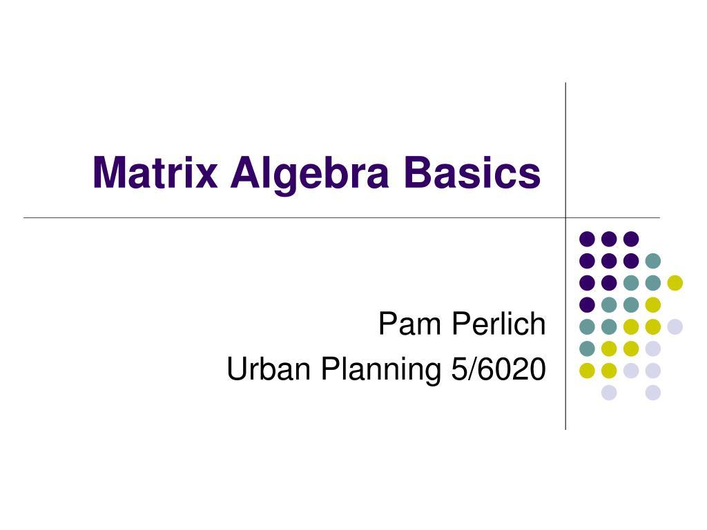 matrix algebra basics l.