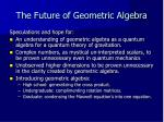 the future of geometric algebra