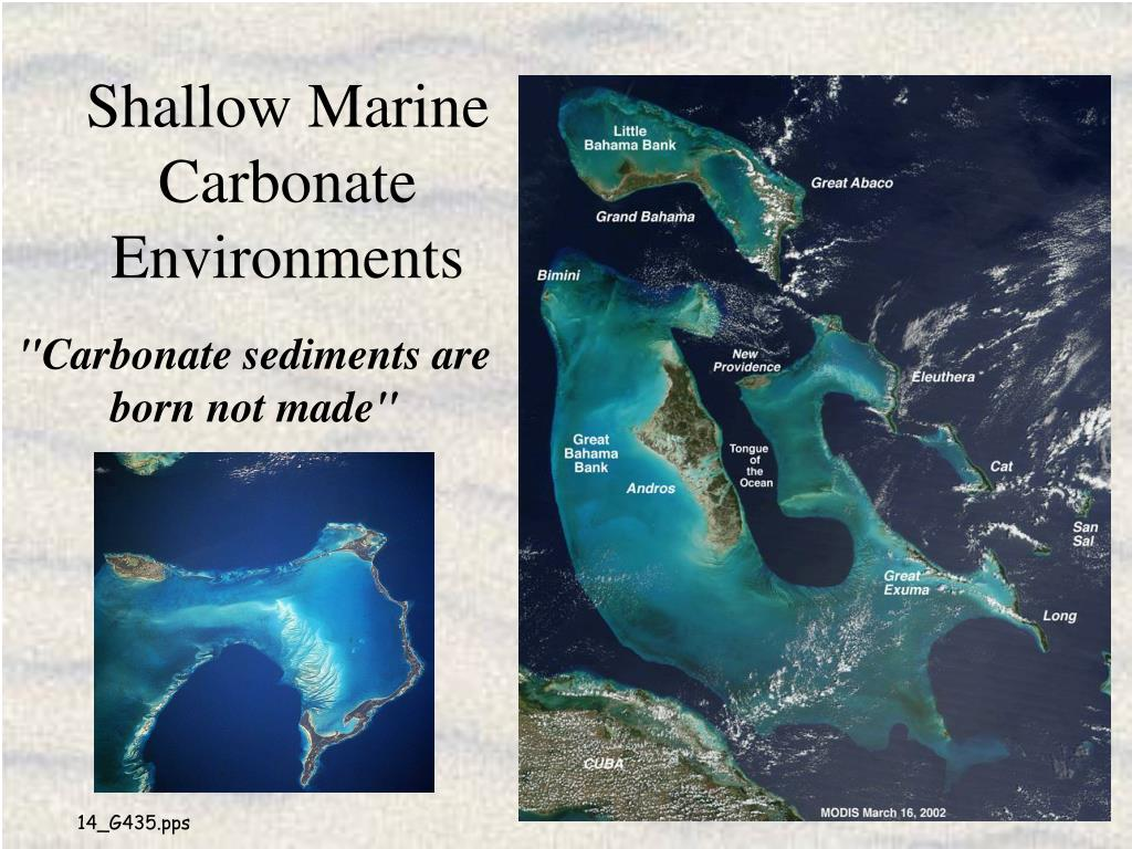 shallow marine carbonate environments l.