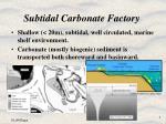 subtidal carbonate factory