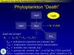 phytoplankton death