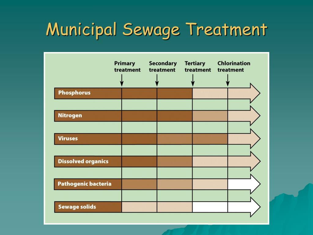 Municipal Sewage Treatment