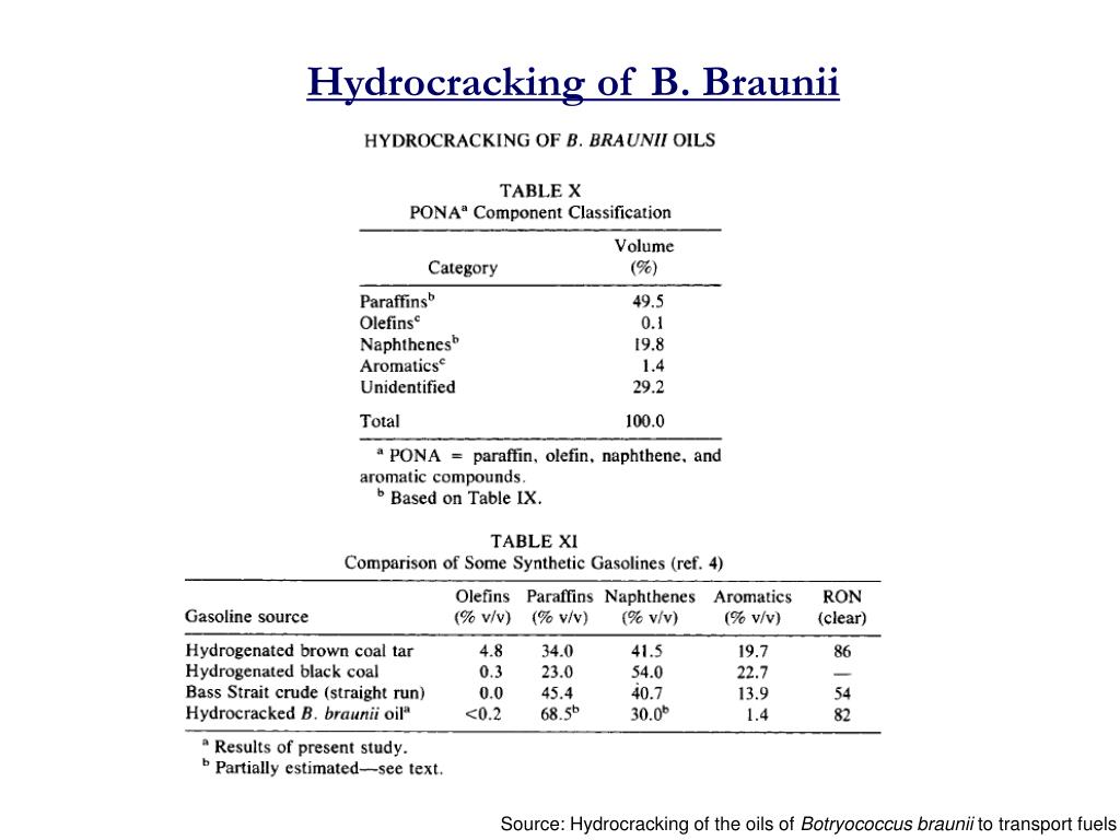 Hydrocracking of B. Braunii