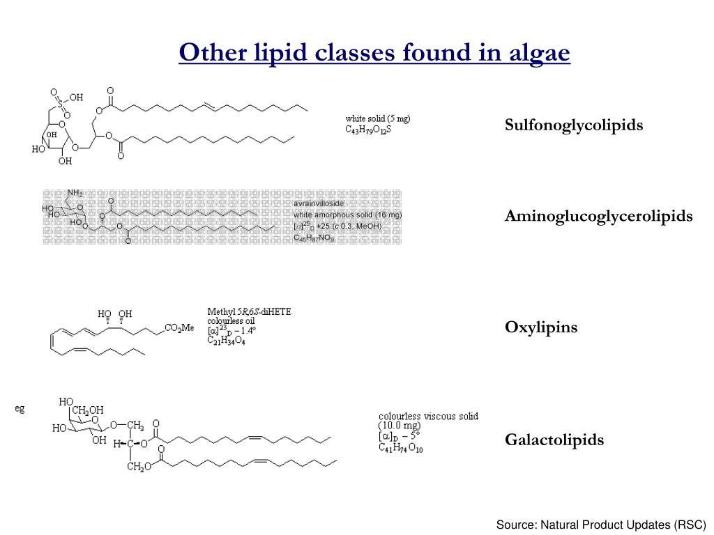 Other lipid classes found in algae