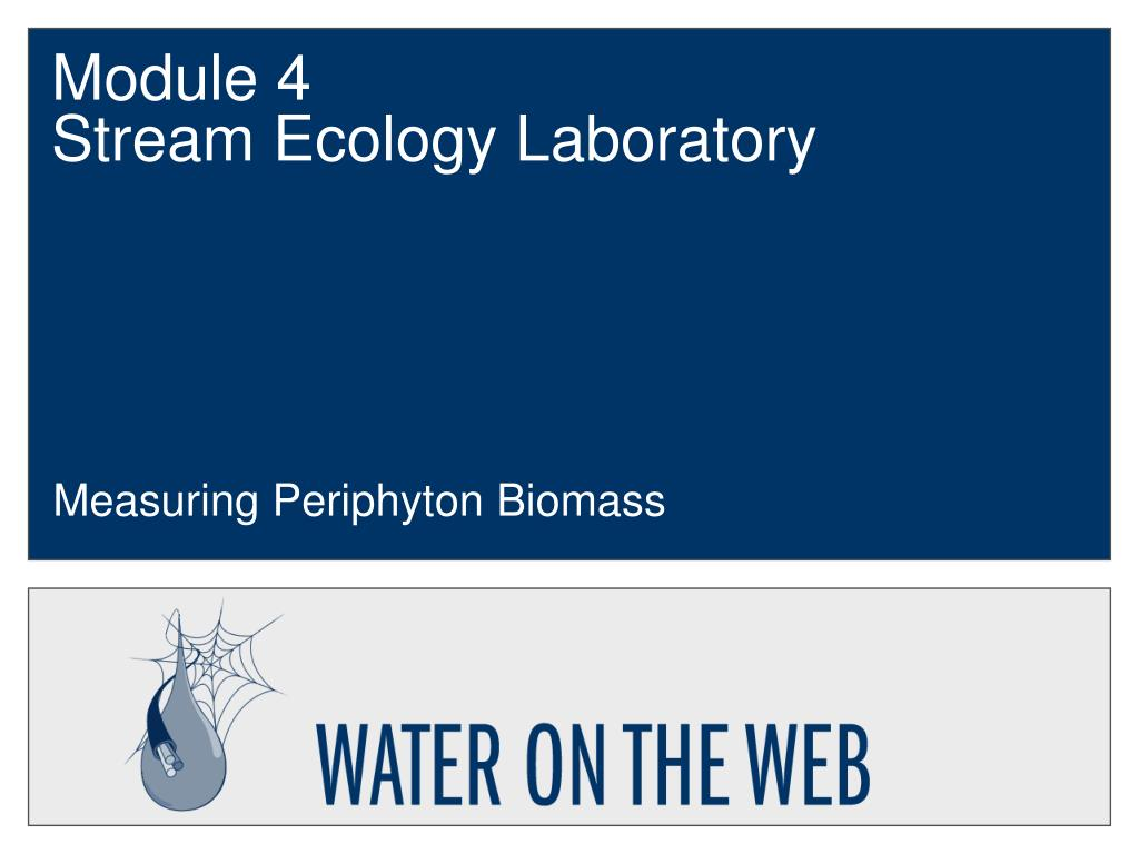 module 4 stream ecology laboratory l.