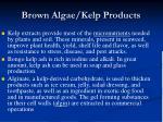 brown algae kelp products