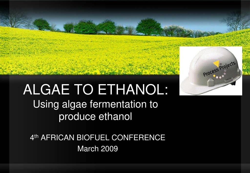 algae to ethanol using algae fermentation to produce ethanol l.