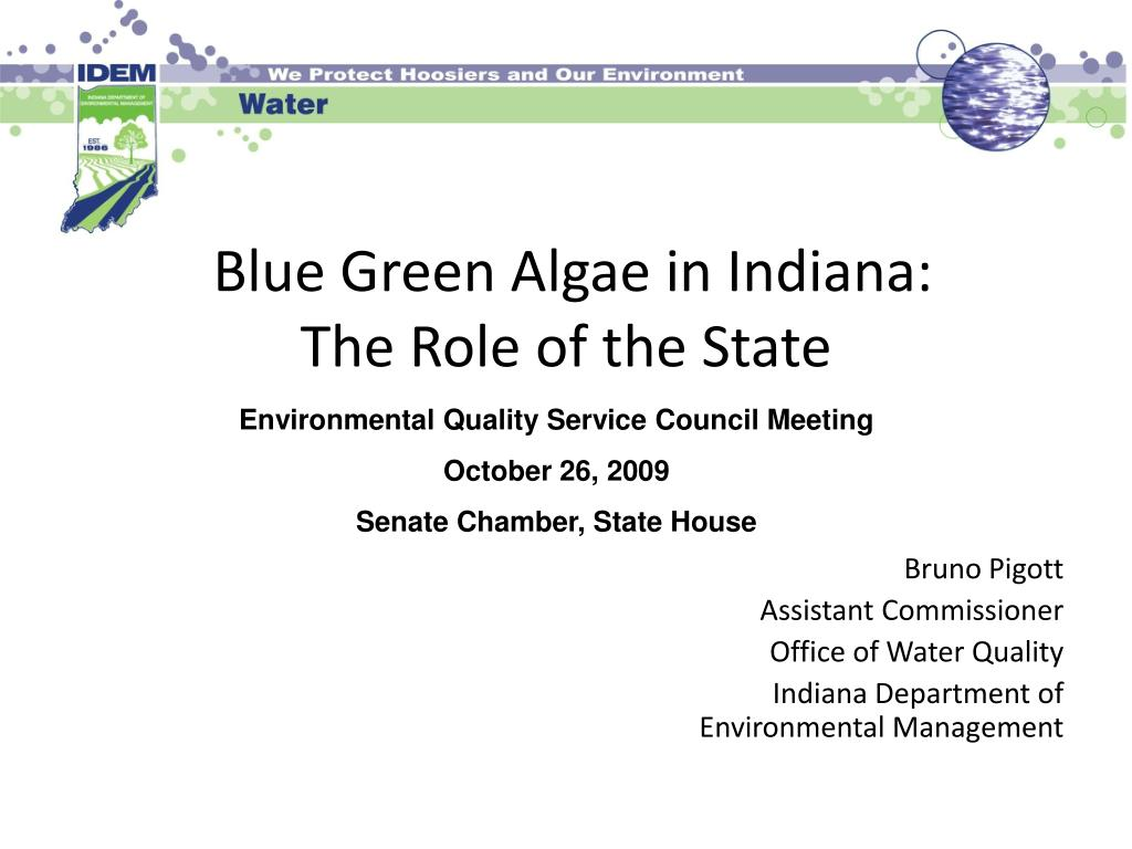 blue green algae in indiana the role of the state l.