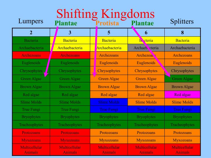 Shifting kingdoms