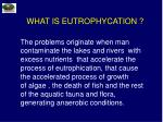 what is eutrophycation5