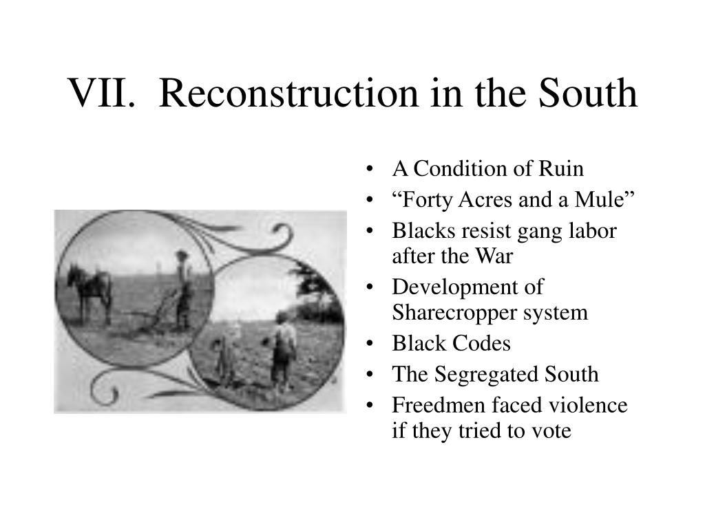 VII.  Reconstruction in the South