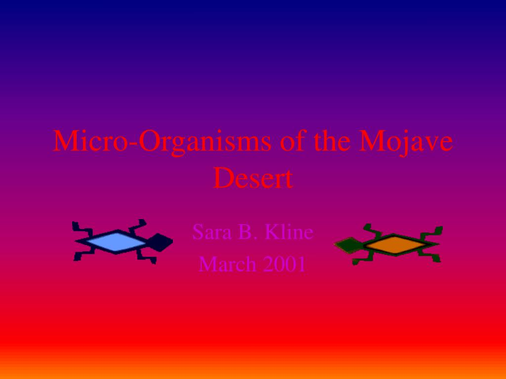 micro organisms of the mojave desert l.