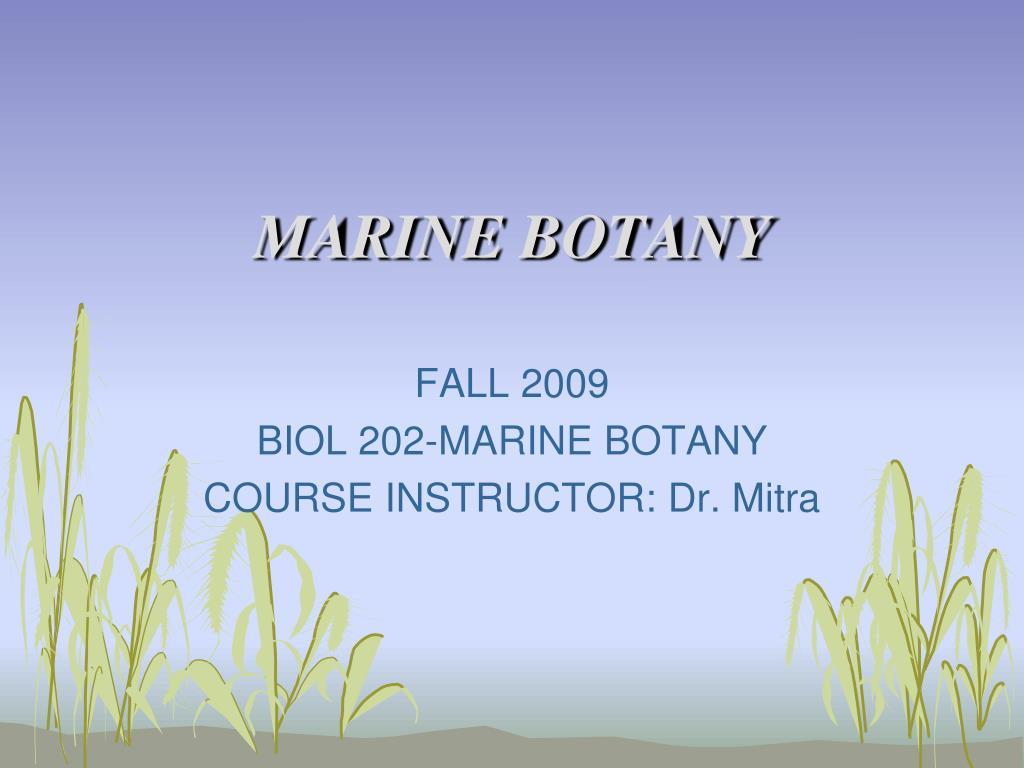 marine botany l.