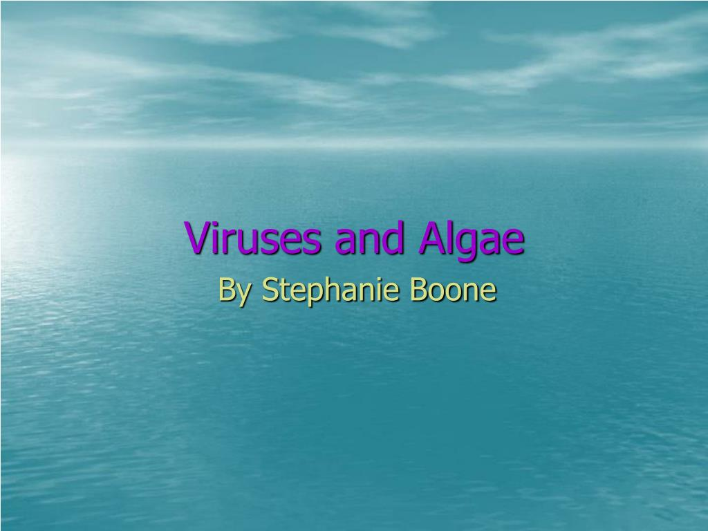 viruses and algae l.