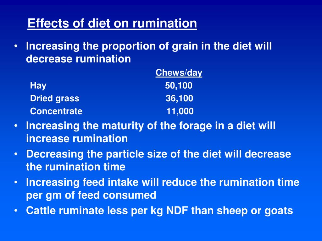 Effects of diet on rumination