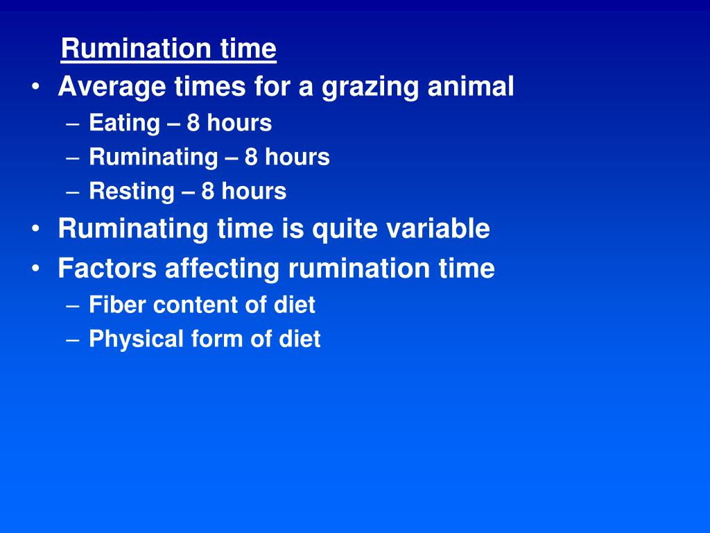 Rumination time