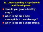 1a understanding crop growth and development
