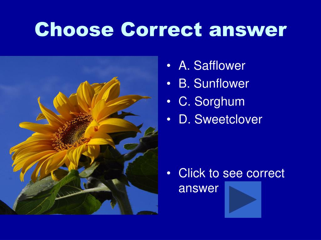 Choose Correct answer