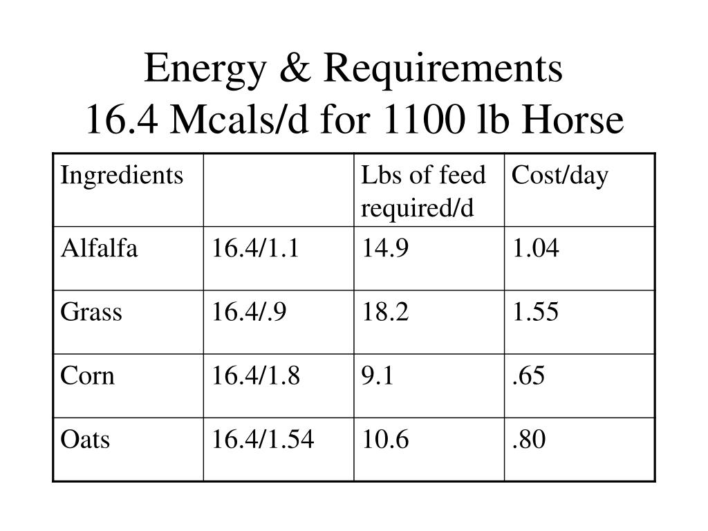 Energy & Requirements