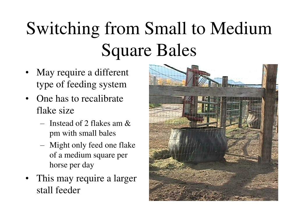 Switching from Small to Medium Square Bales