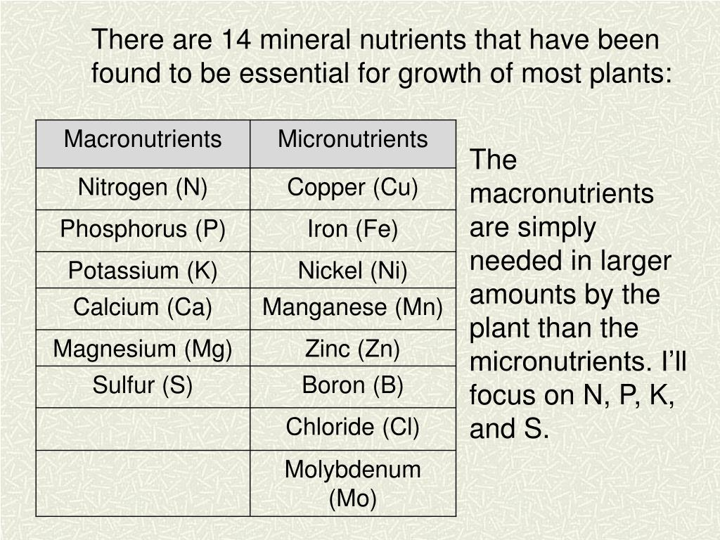 There are 14 mineral nutrients that have been found to be essential for growth of most plants: