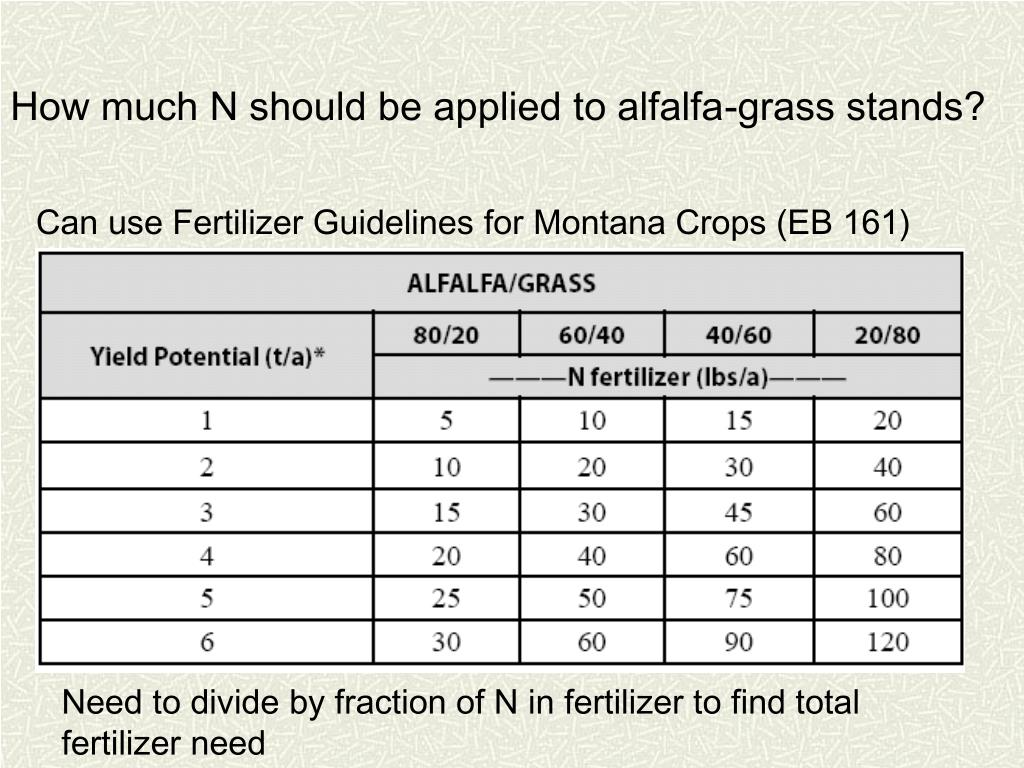 How much N should be applied to alfalfa-grass stands?
