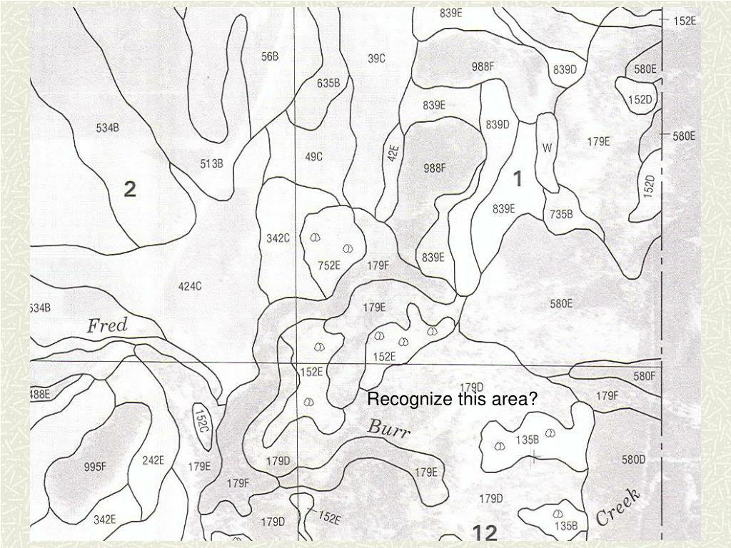 Recognize this area?