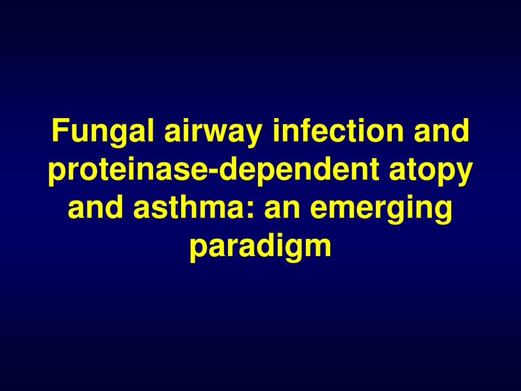fungal airway infection and proteinase dependent atopy and asthma an emerging paradigm l.