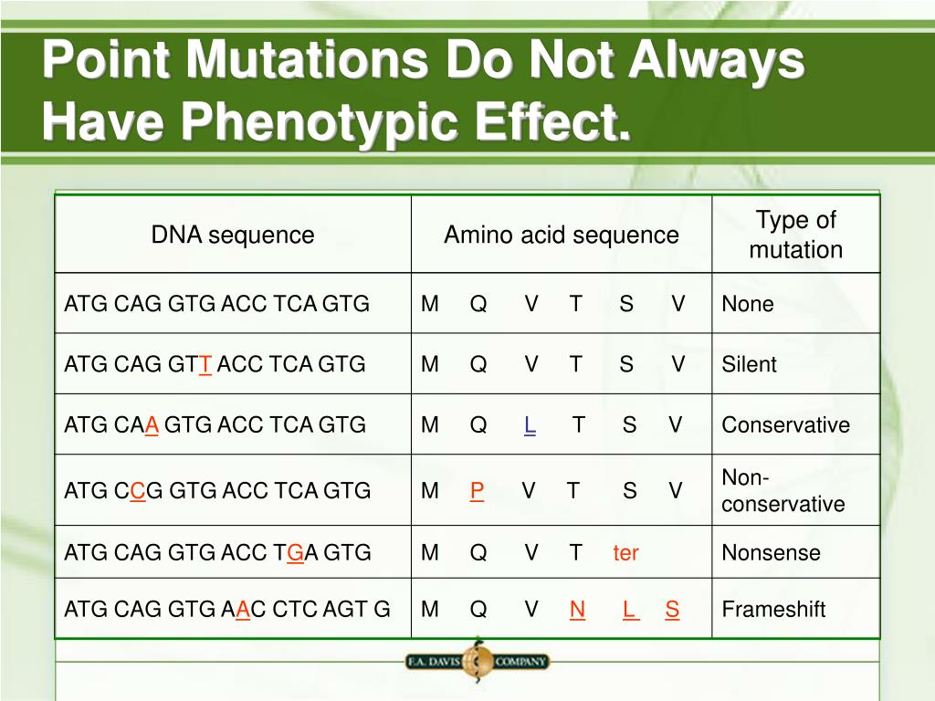 Point Mutations Do Not Always Have Phenotypic Effect.