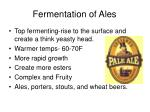 fermentation of ales