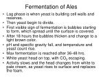 fermentation of ales21