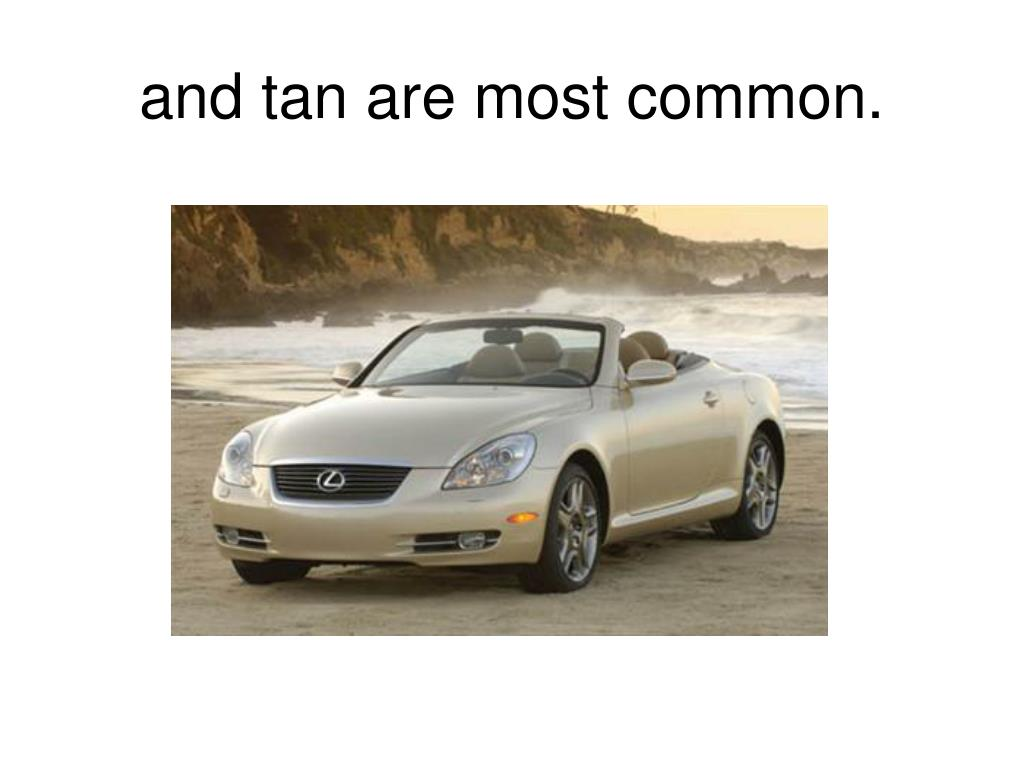 and tan are most common.