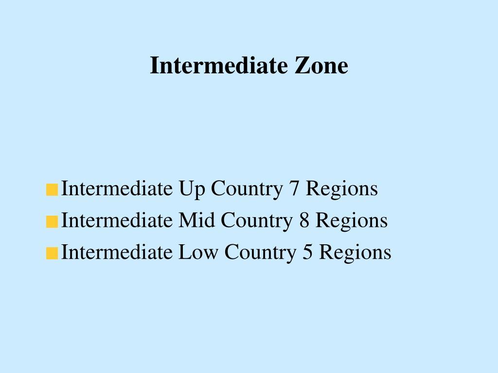 Intermediate Zone