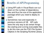 benefits of api programming