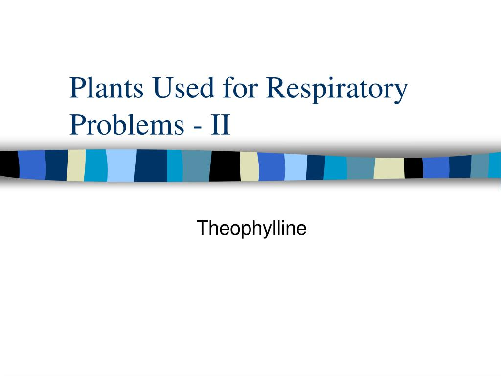 plants used for respiratory problems ii l.