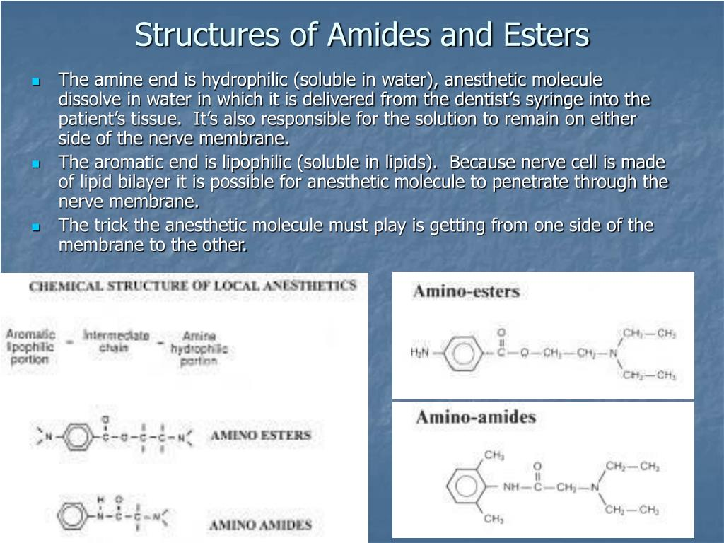 Structures of Amides and Esters