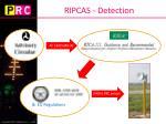 ripcas detection