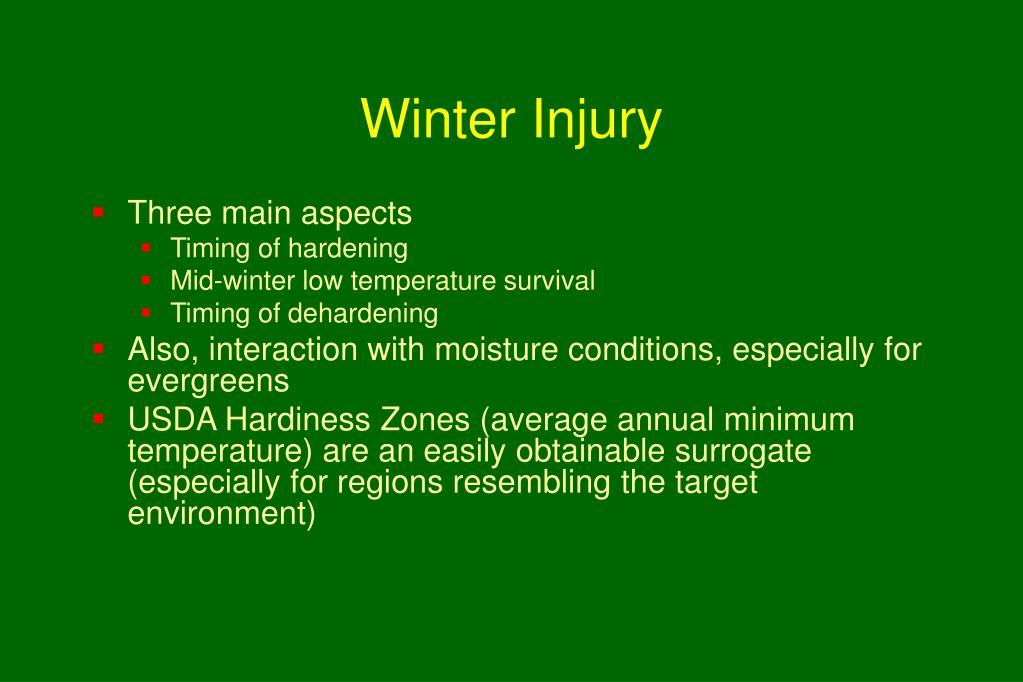 Winter Injury