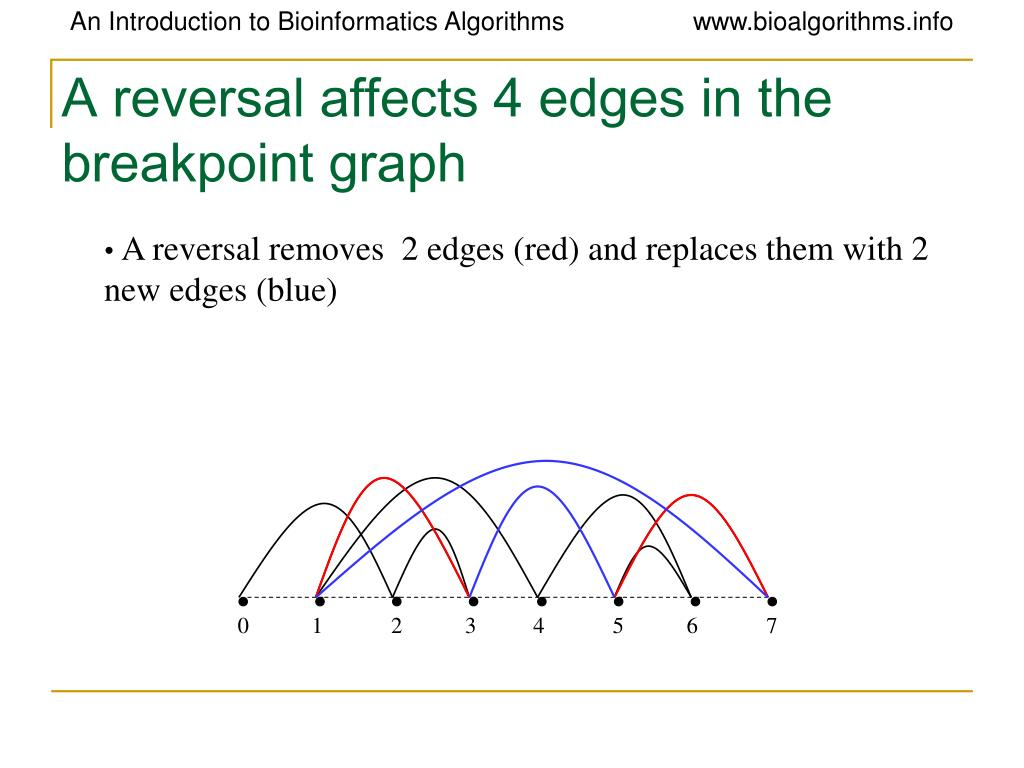 A reversal affects 4 edges in the breakpoint graph