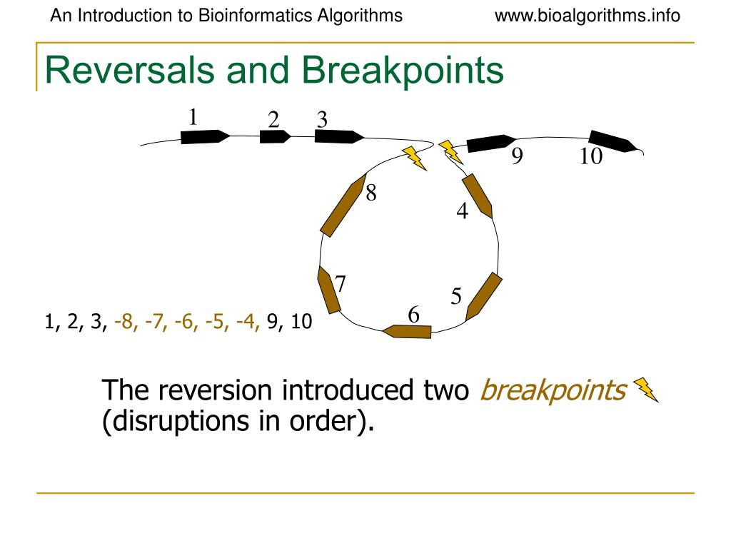 Reversals and Breakpoints
