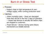 burn in or stress test