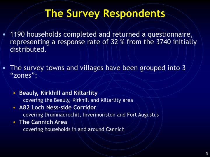 The survey respondents
