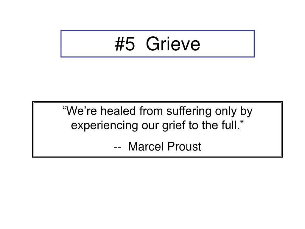 #5  Grieve