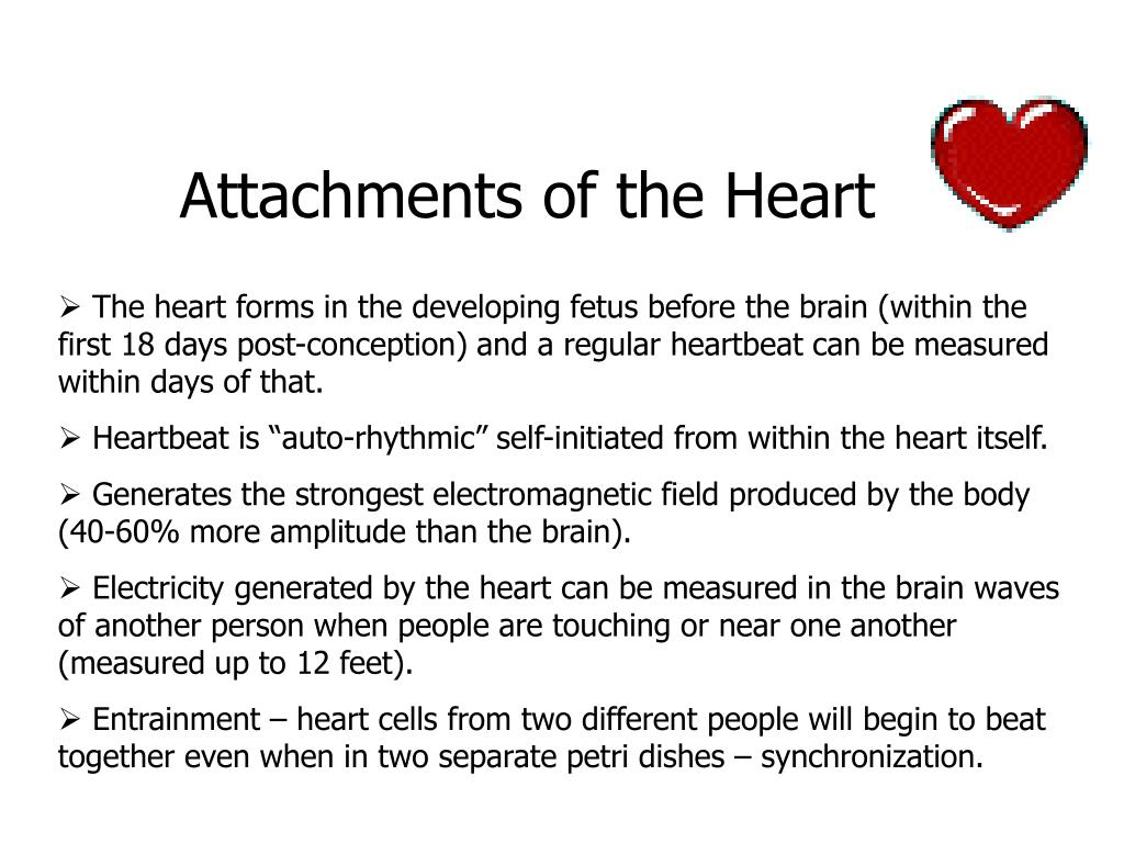 Attachments of the Heart