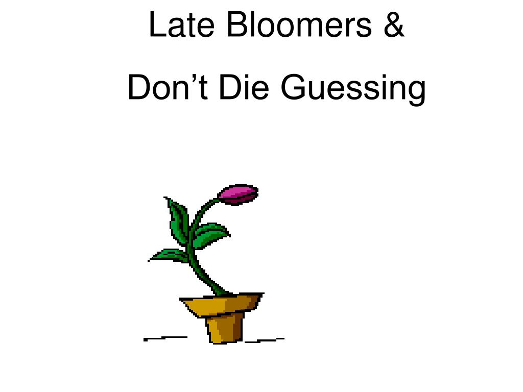 Late Bloomers &
