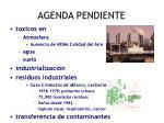 agenda pendiente