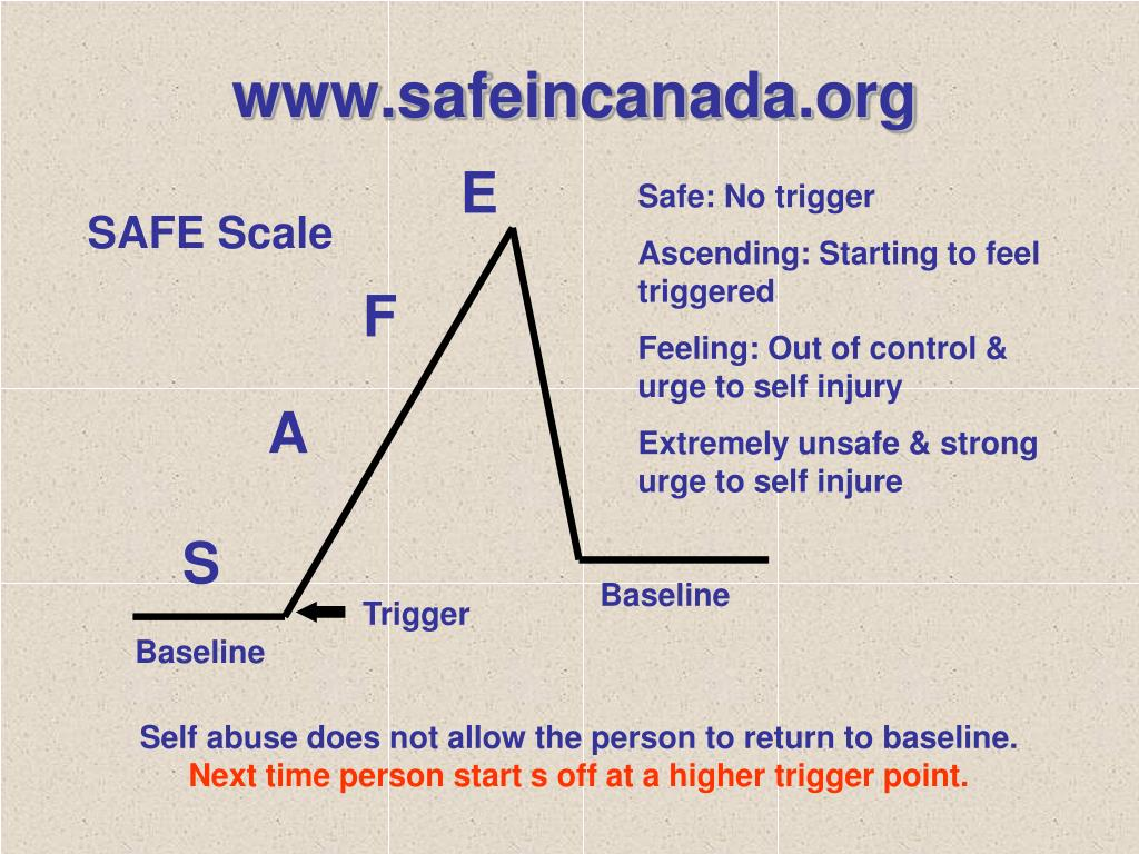 www.safeincanada.org