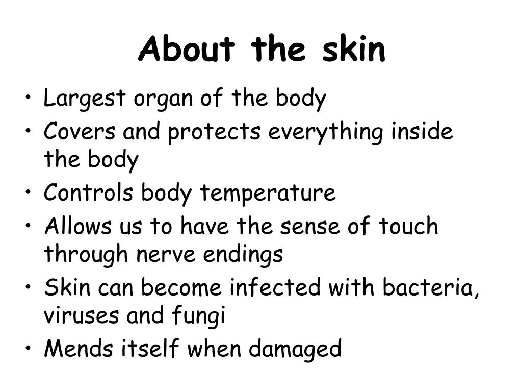 About the skin