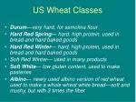 us wheat classes